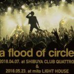a flood of circleライブ音源がAWAにて限定配信