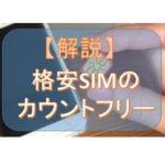 格安SIM(MVNO)におけるカウントフリーの意味とは