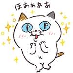 DHC、「タマ川 ヨシ子(猫)」新作LINEスタンプが無料配信開始